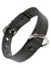 Mister S Leder Puppy Halsband - schwarz