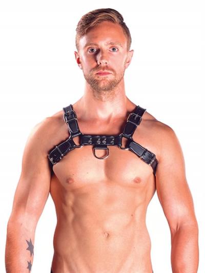 Mister B Leather Chest/Brust Harness, schwarz-grau