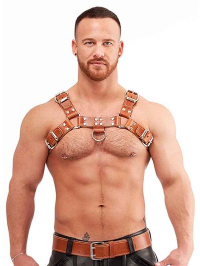 Mister B Signature Harness