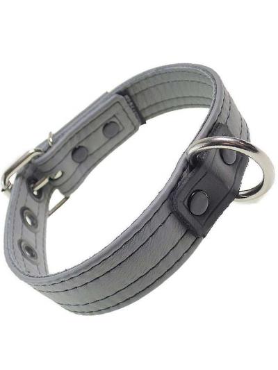 Mister S Leder Puppy Halsband - grau