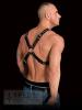 Brust-Harness ADONIS - Kreuzharness