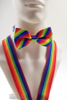 Gay Pride Regenbogen Fliege