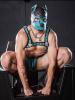 Mister S Neopren K9 Puppy-Maske - schwarz/aqua