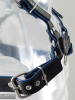 Oberkörper-Harness PITBULL mit blauer Paspel - 4cm