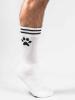 Sk8erboy PUPPY Socks