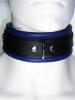 Leder-Halsband, gepolstert blau